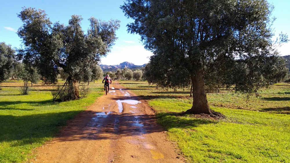 Bike Experience Tours_Matarraña en bicicleta